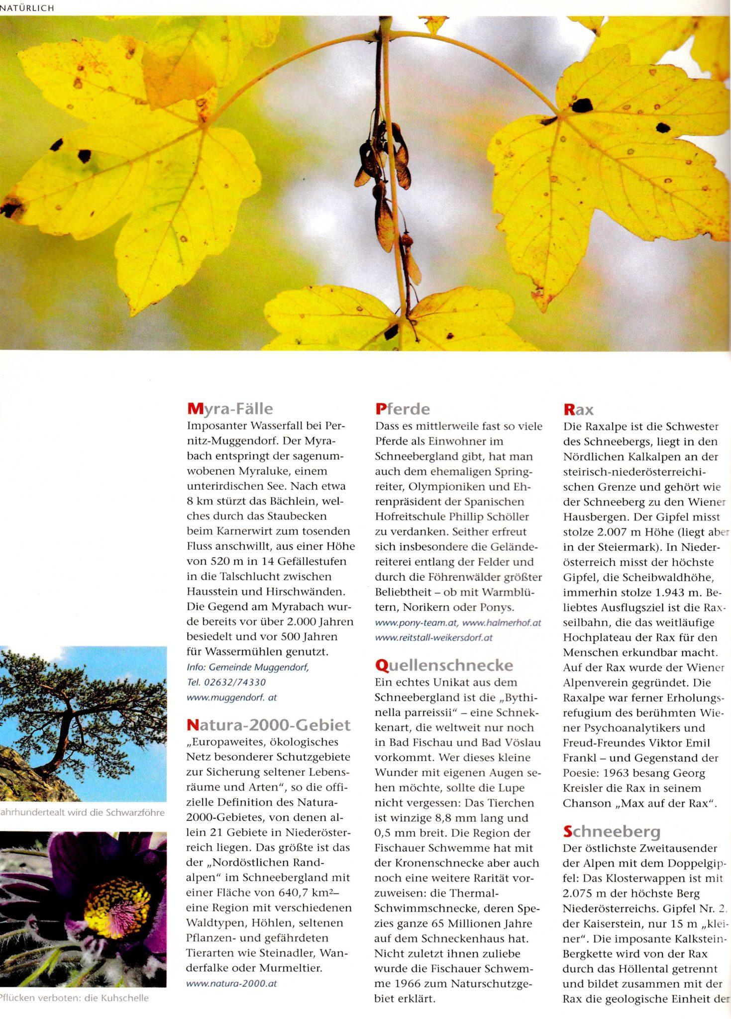 Tourismus NÖ, Naturlexikon | Idee, Konzept, Recherche, Bildredaktion, Text