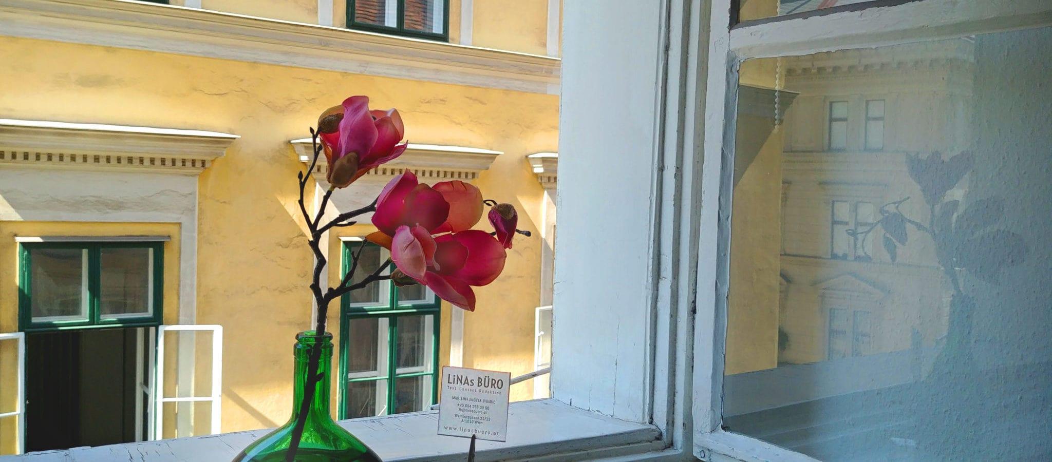 Das Fenster von LiNAs BÜRO in Wien | Lina Bibaric