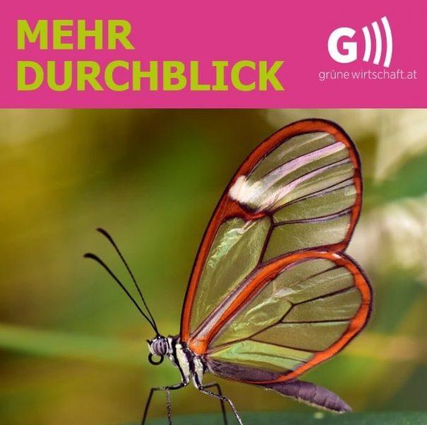 Idee, Design und Text Social Media Kampagne Grüne Wirtschaft | Facebook Grüne Wirtschaft Österreich